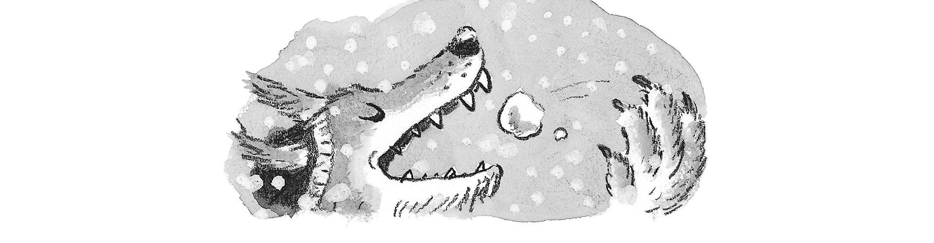 Dolfje-sneeuwwolfje-Paul-van-Loon-Hugo-van-Look