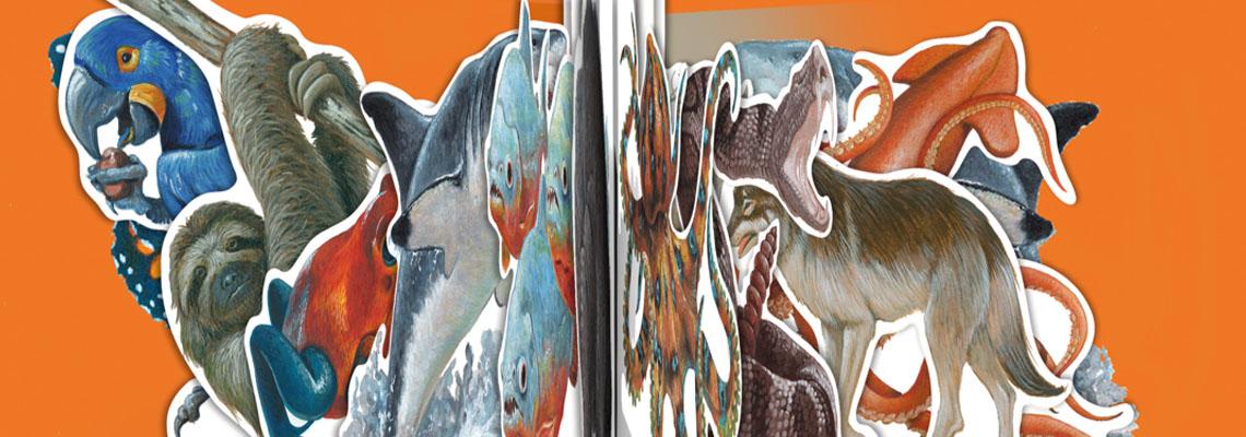Het fantastisch mooie dierenrijk - Moira Butterfield, Stuart Martin