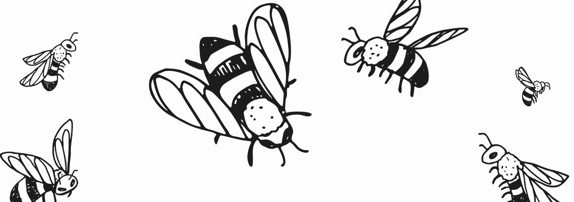 Het jaar dat de bijen kwamen - Petra Postert
