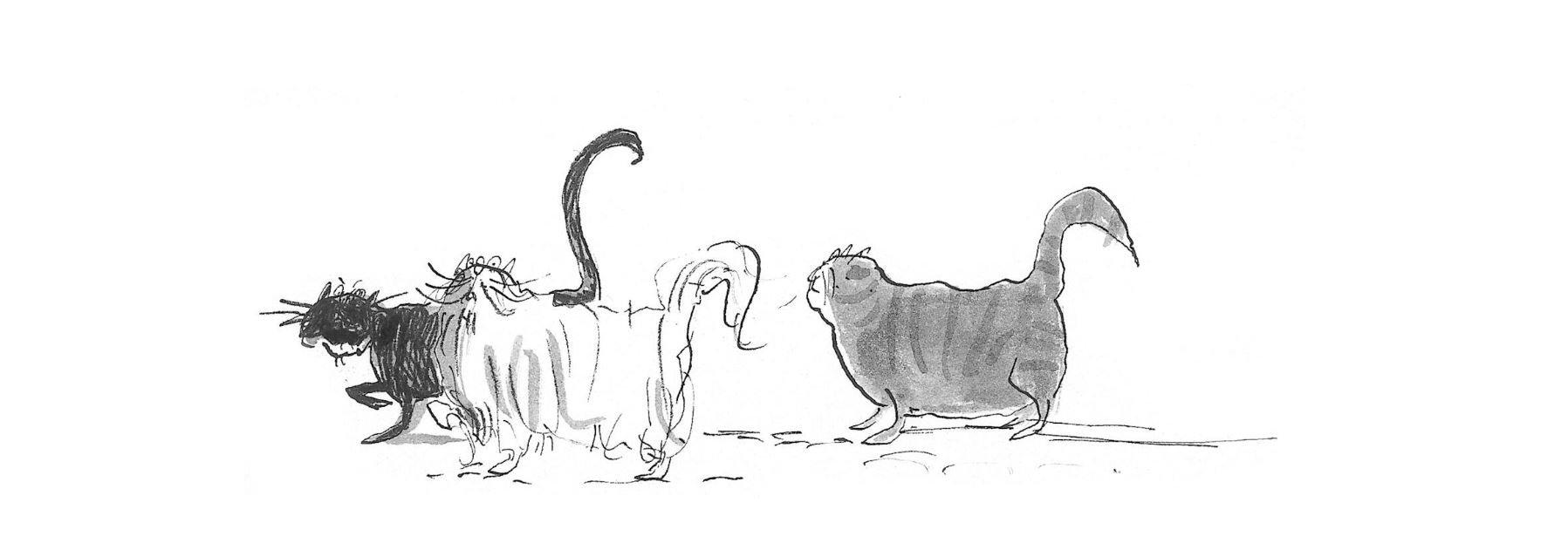 Superheld Jan en het geniale kattenplan - Harmen van Straaten