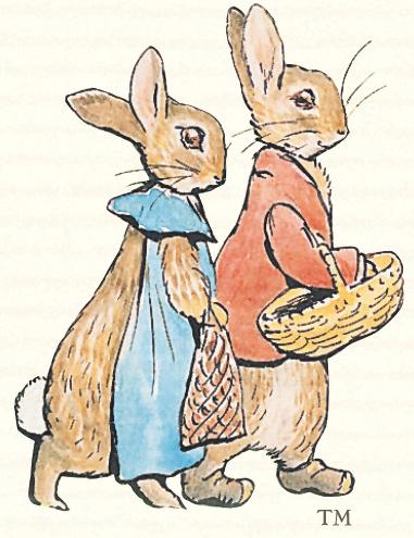 Wollepluis-konijntjes - Beatrix Potter