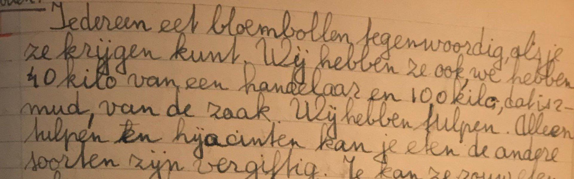 Dagboekfragment