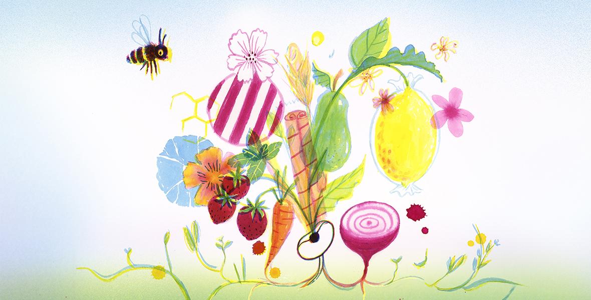 Van honingbij tot hagelslag - Over al het lekkers dat van planten komt - Joel Broekaert - Marieke van Ditshuizen