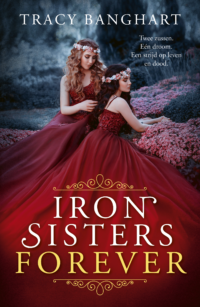 Iron Sisters Forever Tracy Banghart